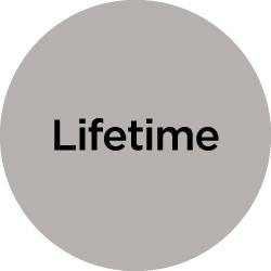 icon lifetime
